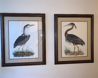 "Pair of Audubon like prints set $250 - dimensions 26""x31"""