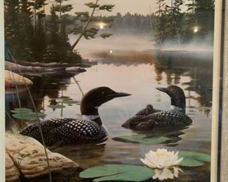 Ducks unlimited pictures