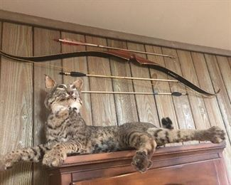 cats are just hangin out     BOW SOLD