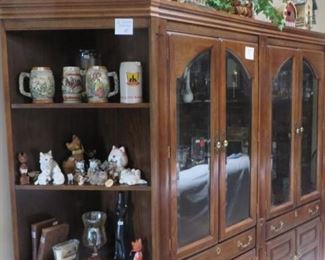 Lighted Cabinets and Corner Shelves