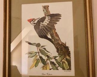$50 - Sallie Ellington Middleton Pileated Woodpecker Lithograph