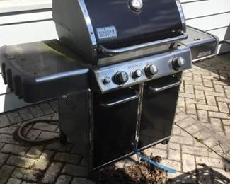 Weber Outdoor Gas Grill