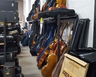 Stand Up Basses and Cellos