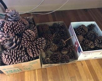 PINECONES - ALL SIZES