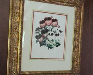 pansy print in frame