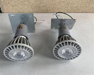 2 Incandescent LED Luminaires