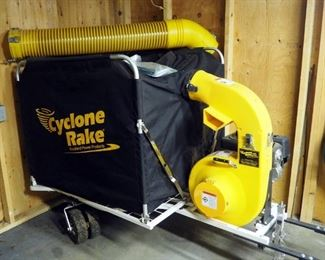 Cyclone Rake XL Power Vacuum With Hose And Accessories