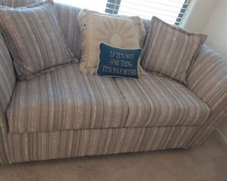 LOVE SEAT SIZED SOFA BED
