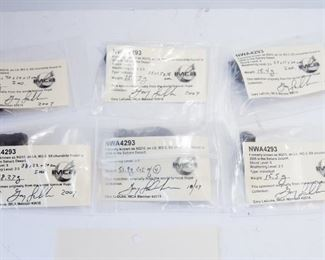 A11	Lot of 6 NWA 4293 Meteorite Specimens 131.34g	$76.00