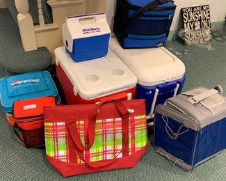 "Lot of coolers - $50 - Largest is 24""L x 14""W"