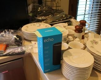Echo dot and other electronics just found