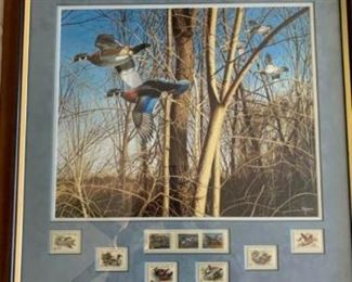 Bird Picture Collectibles