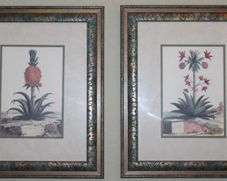 """Paragon Picture Studio """"Pineapple I""""  & """"Pineapple II"""" Botanical Print (16 x 20) Framed and Matted. Overall       (20"""" x 24 1/4"""")"""