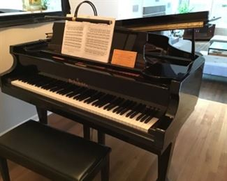 Pristine Ebony WM. KNABE & CO Grand Piano. Concert Artist Series. Purchased in Wilmette  purchased for $13,000.     Call to discuss details