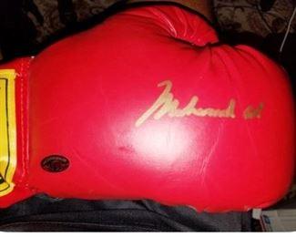 Ali right glove