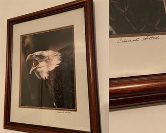 Signed Framed Photography By Charles Sterken