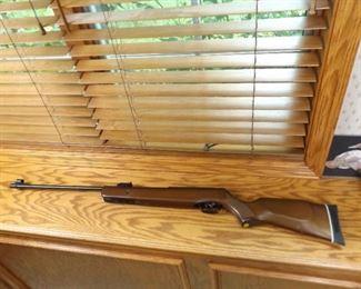 Gamo Hunter 440 Air Rifle