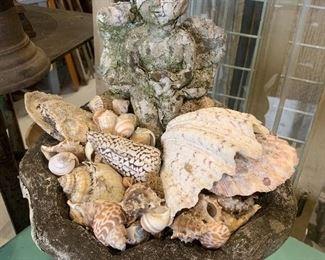 Antique white chippy concrete seated cherub bird bath - shells nfs, inspiration only.