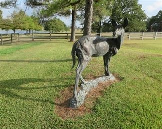 """Life size hollow bronze deer by Kenneth Rodney Bunn b. 1935 - """"White tail doe looking back"""" 12/12 76x64 Bought  directly from the artist"""