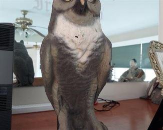 Owl $40