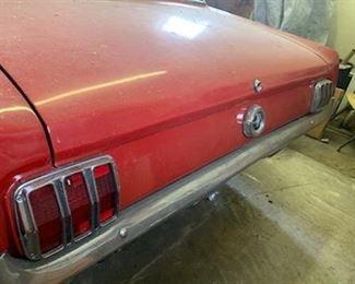 Rear of Mustang