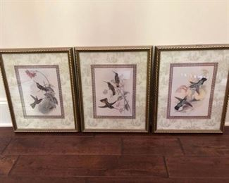 https://ctbids.com/#!/description/share/537365 Elegant Hummingbird Prints. Three elegantly framed prints of hummingbirds. Gold toned frames measure 18'' x 15''