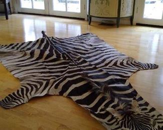 Zebra hide taxidermy from Tanzania