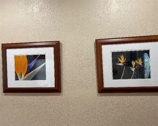 James Keating photos, professionally framed