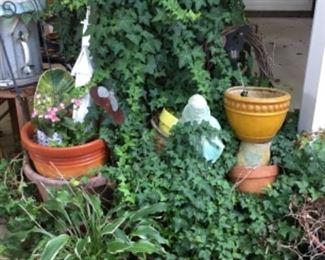 Outdoor plants galore