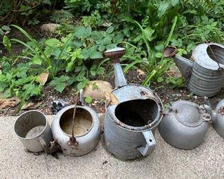 Galvanized Metal Watering Ca