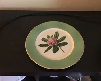 Rare and Early Greenbrier Rhododendron Plate by Onondaga Pottery Company  (Forerunner of Syracuse China)
