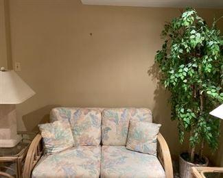 RATTAN LOVE SEAT - BUY IT NOW $150 SMALLER FICUS TREE - BUY IT NOW $30