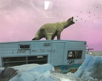 polar bear photo detail