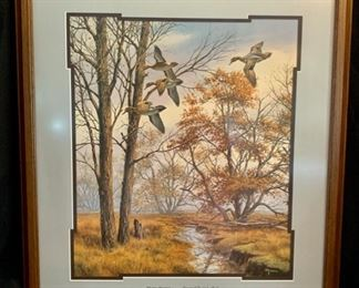 """SET OF 6 FRAMED MISTY MORNING SERIES """"Misty Morning Green Winged Teal"""" by David Maass"""