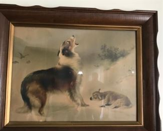 Collie and Sheep vintage print