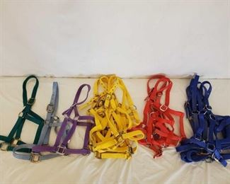 373	  New Standard Horse Size Nylon Halters in all Colors New Standard Horse Size Nylon Halters in all Colors Quantity is 17 + or -