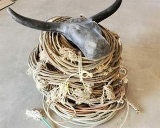 86	  1 Steer Head Roping Dummy and Bundles of Misc Used Ropes 1- Steer Head Roping Dummy 3 + OR - Bundles of used Ropes. Great for home or yard decor, projects or crafts. You name it with your imagination the possibilities are endless.