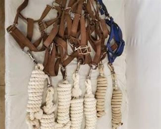535	  Horse Halters and Lead Ropes Lot of Nylon Horse Halters and Lead Ropes: 15- NYLON Webbed Horse Size Halters 5- Lead Ropes  Appear to never of been used, just stored.