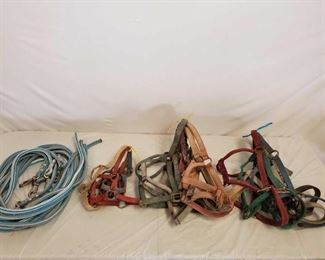 537	  Lot of Nylon Webbed Horse Halters, Foal/Standard/Large Sizes and Lead Ropes Great mix of Nylon Webbed Halters and Lead Ropes featuring a variety of sizes including (3)Foal, (5)Standard and (5) Large size. Also includes 5 lead ropes in good condition.