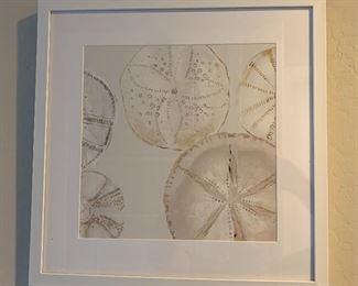 2pc Sanddollar Decor Art PAIR17x17x1inHxWxD