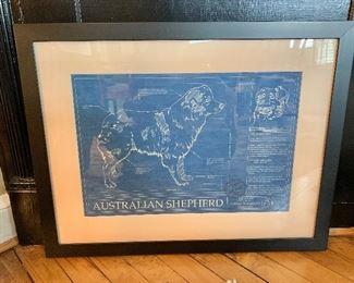 "$80 - Australian Shepherd print.  26"" W x 20.25"" H."