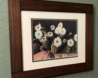 Framed Blooming Cactus Picture14.5x17.5in