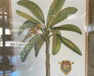 Framed Botanical Print GD Ehret Delin & Sculp33.5x26.5in