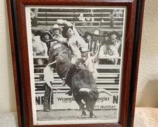 "Framed rodeo picture of ""Ty Murray"" bullrider. Nine-time World Champion. Inductee of the ProRdeo Hall of Fame. He is also co-founder of the Professional Bull Riders (PBR). Measure 10 1/2"" x 13"". $15"