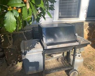 $100. Weber Grill