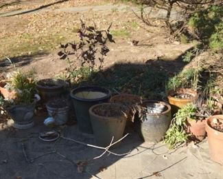 Pots and Plants abound in this yard