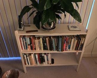 Item 13   $40 Small Bookshelf (books not included)