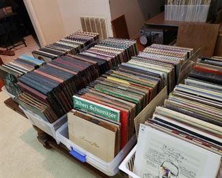 Envious vinyl record collection