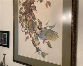 E Paxton Oliver Bird Print