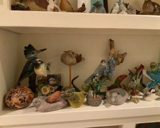 Fun Bird Collection